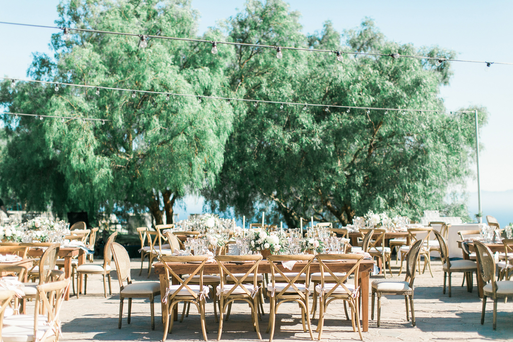 Catalina-View-Gardens-Wedding-47