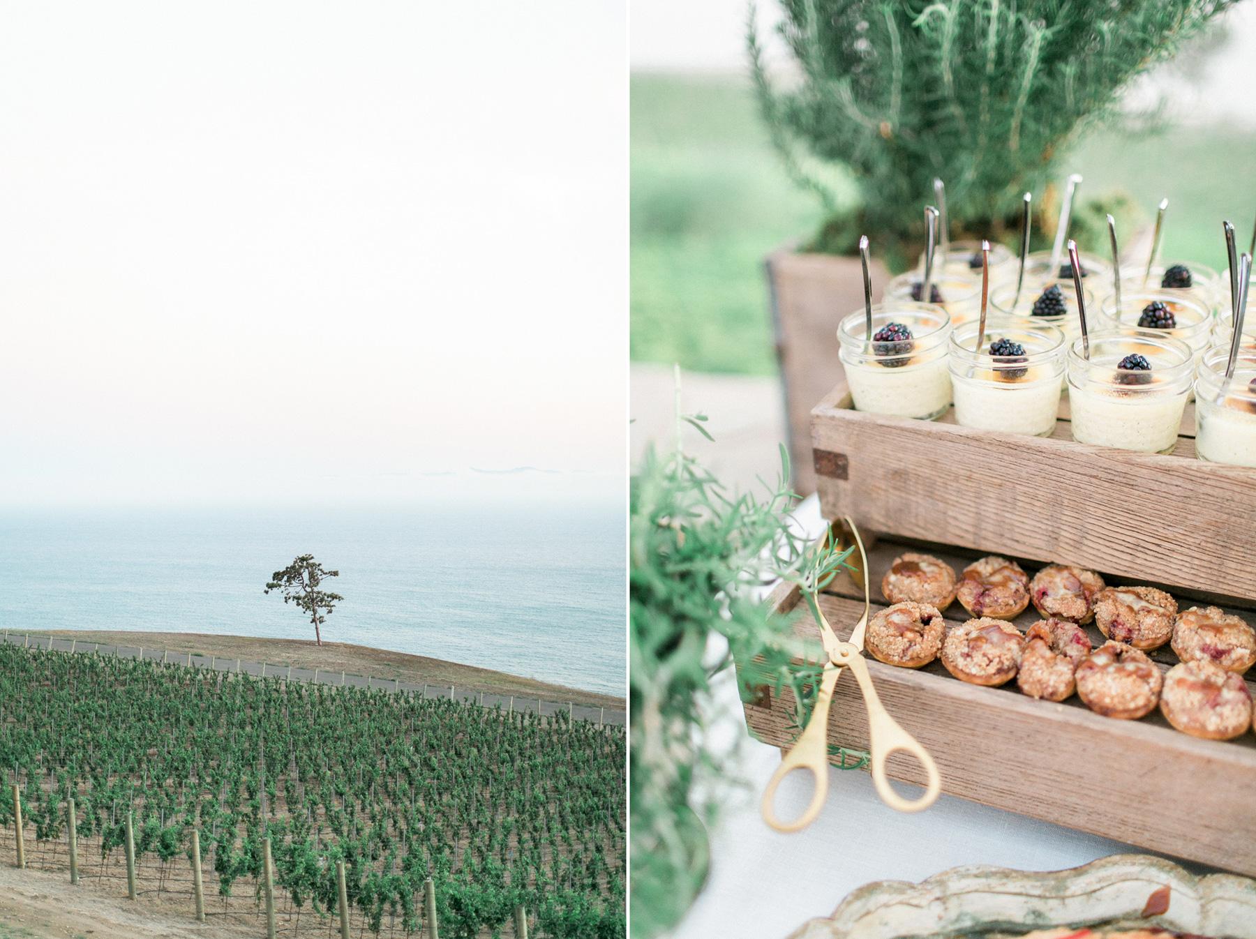 Catalina-View-Gardens-Wedding-68