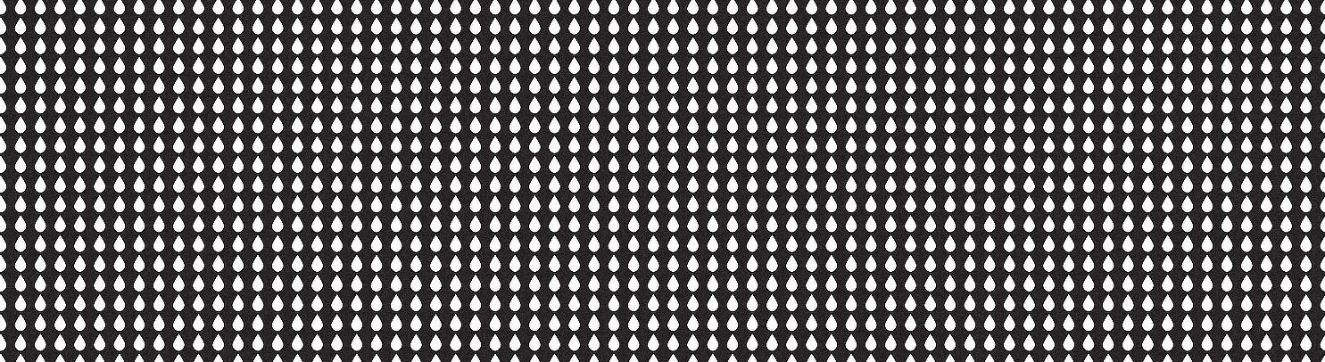 poster_crop_zoom2b.jpg