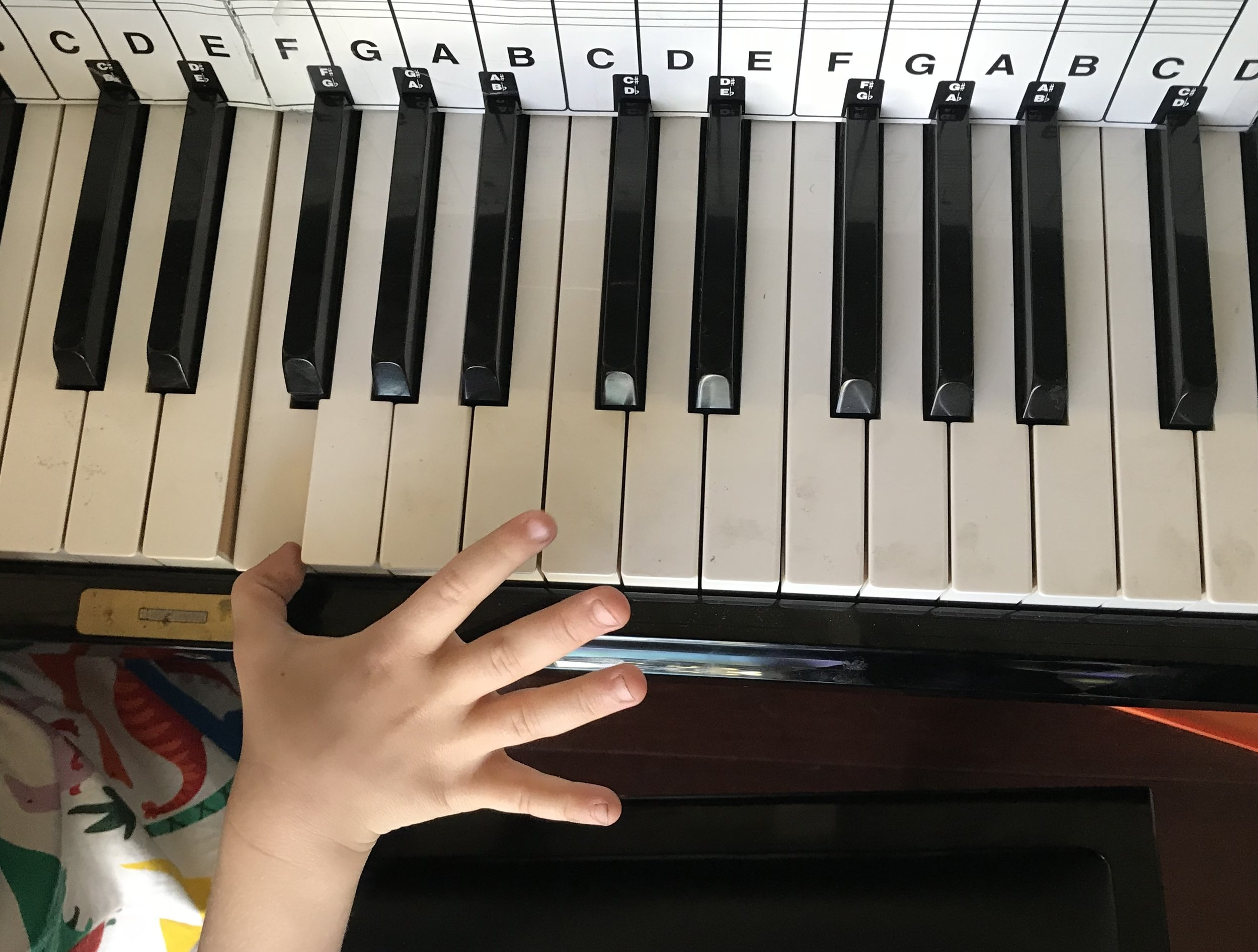 Notice all the happy smudges on the keys? They wipe off :)