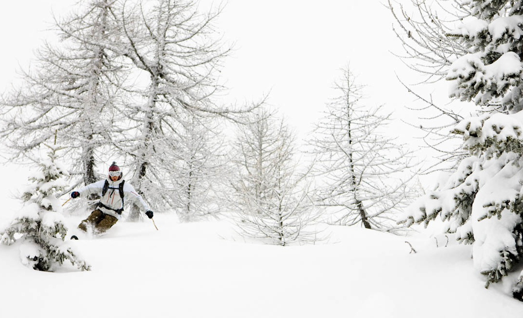 Ski Cham Pow.jpg