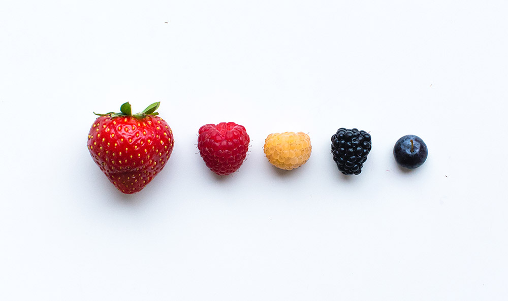 Big Health Benefits in Small Packages:  7 Healing Berries With Powerful Health-Boosting Properties   ConsciousLifestyle  Magazine