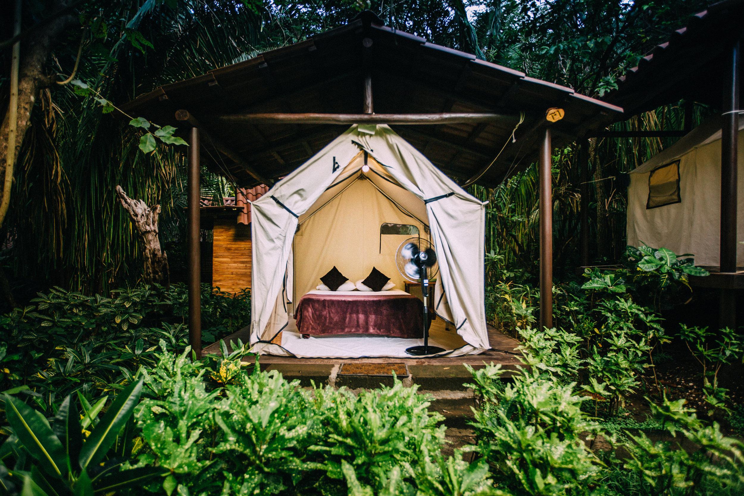 Deluxe Platform Tent