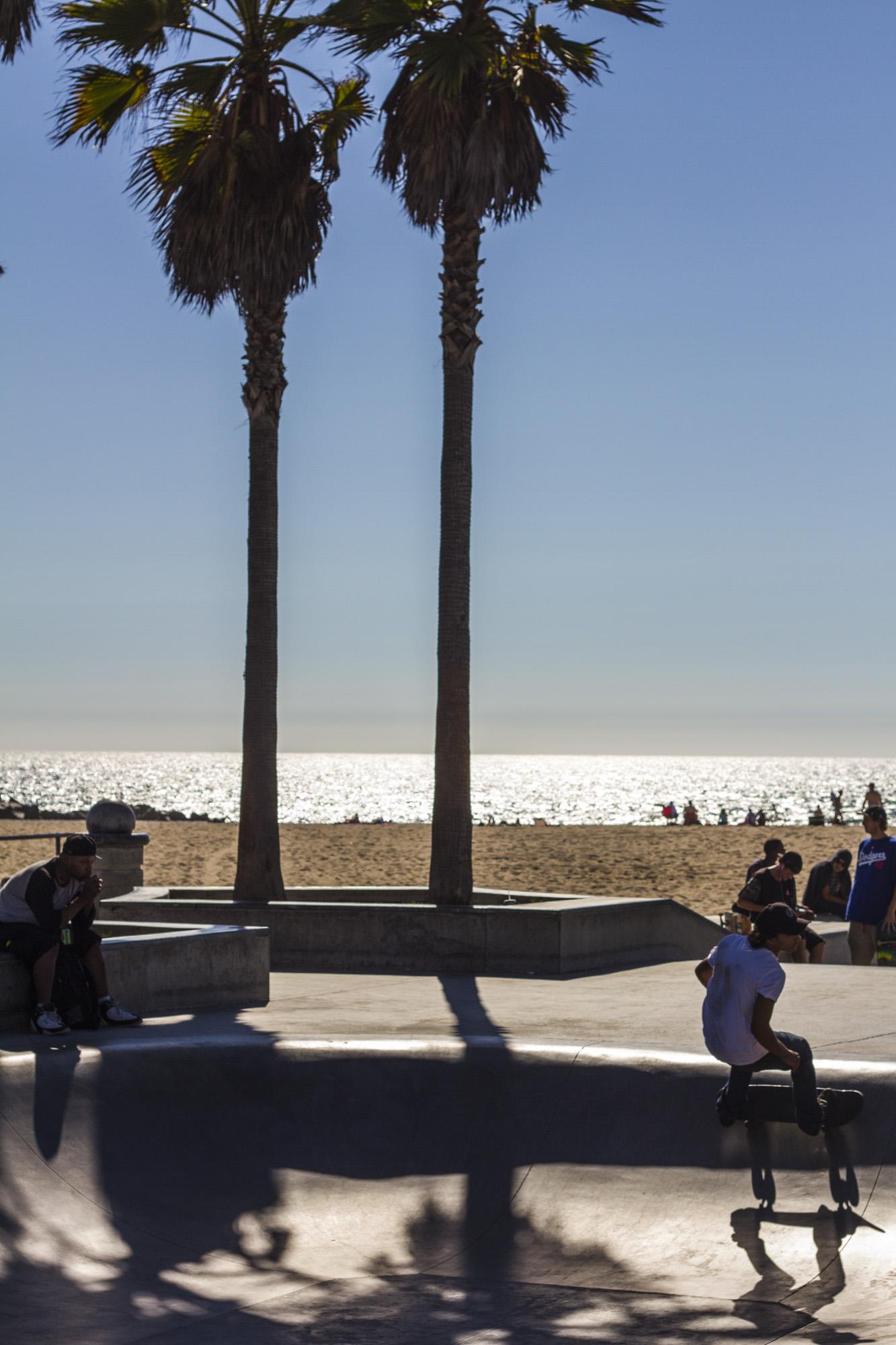 coastal_chkchk14.jpg