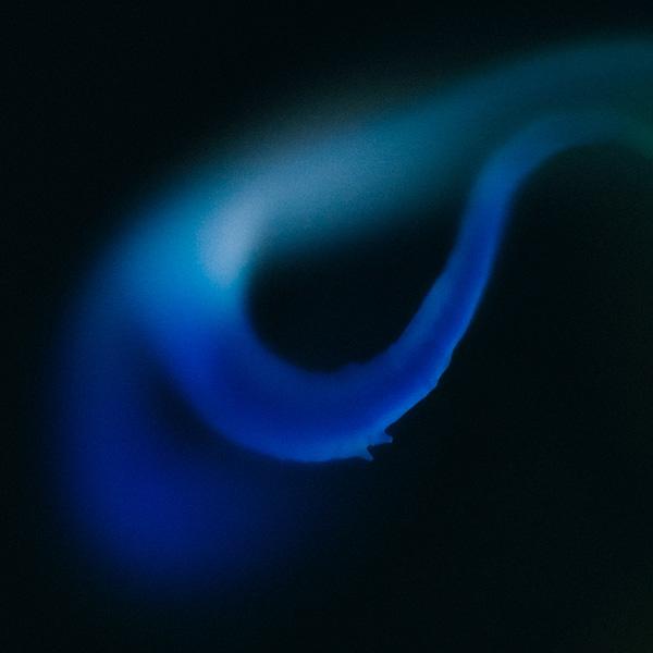 orchid1-BlueghostStudio-copy.jpg