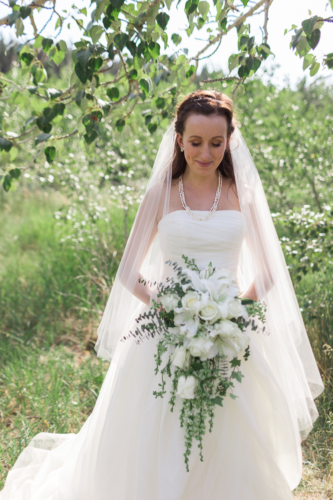 Crestmont-Hall-Wedding-505