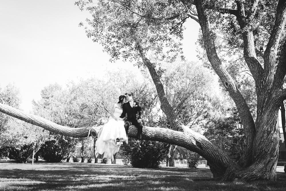 calgary-summer-wedding-ms-50.jpg