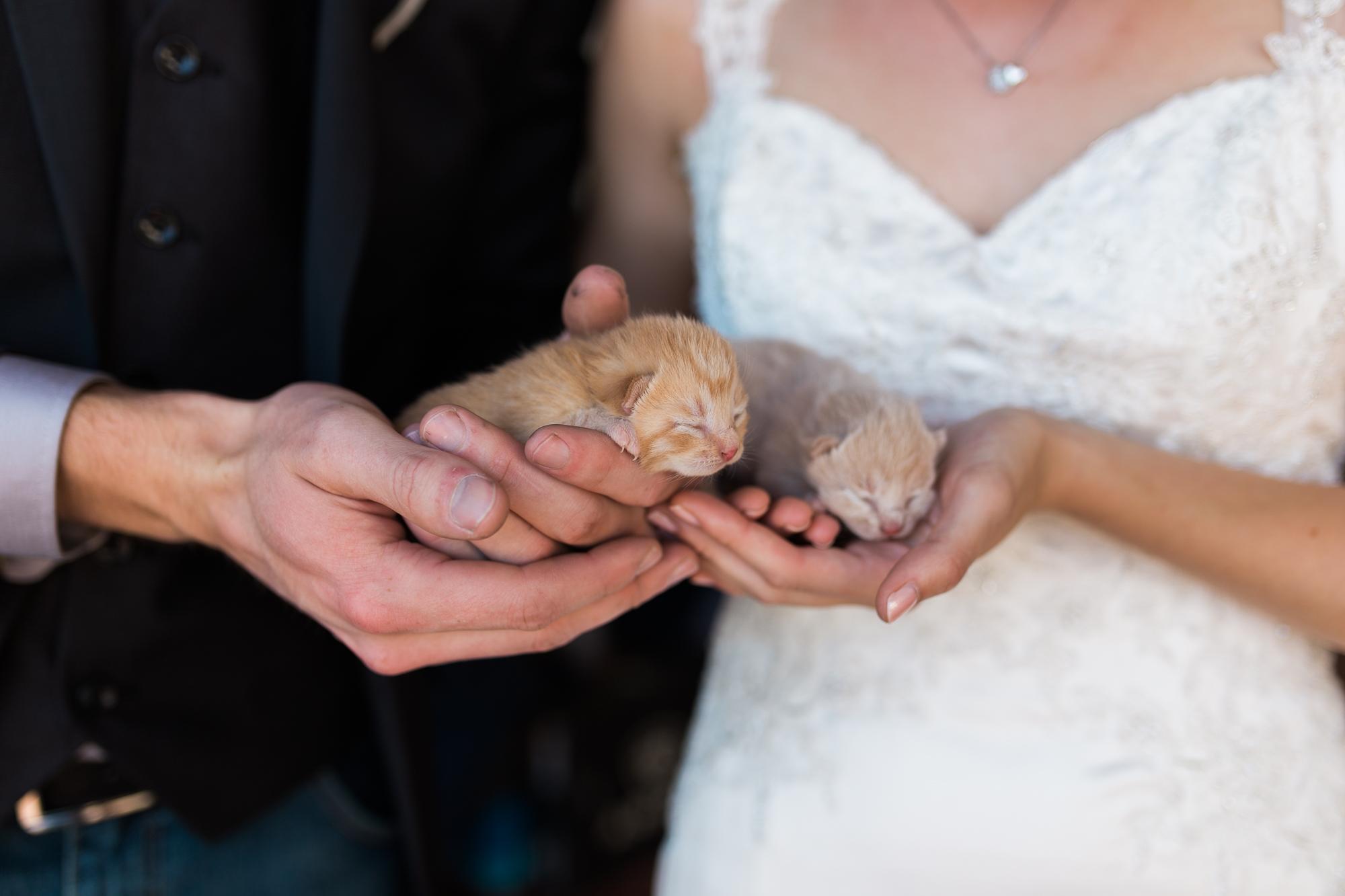 Deanna-Rachel-Photography-calgary-Wedding-photographer-jm-45.jpg