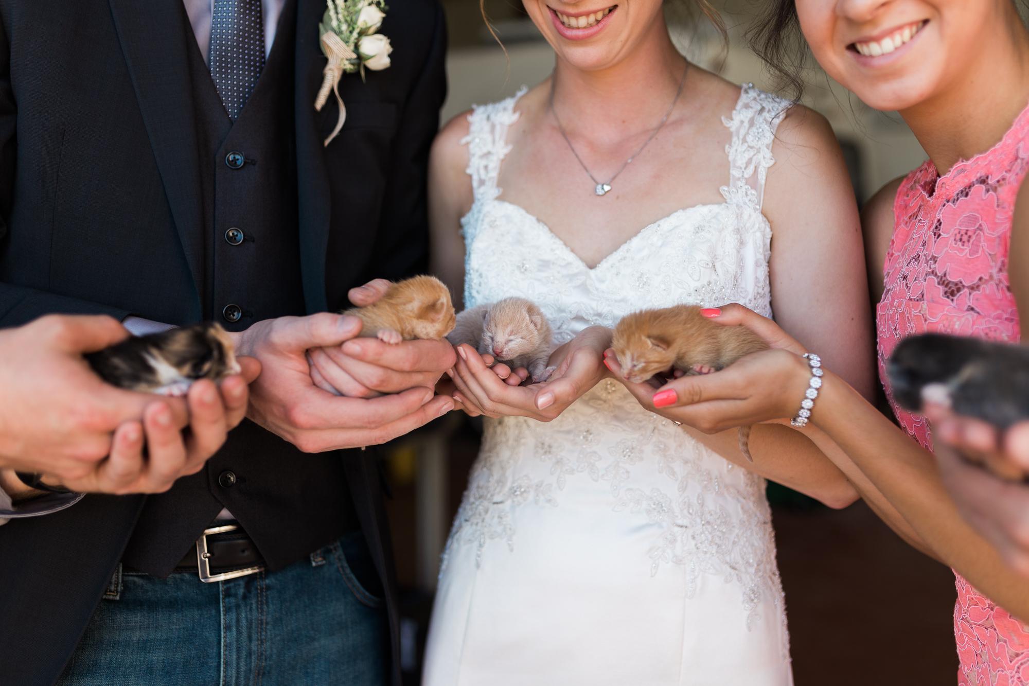 Deanna-Rachel-Photography-calgary-Wedding-photographer-jm-47.jpg
