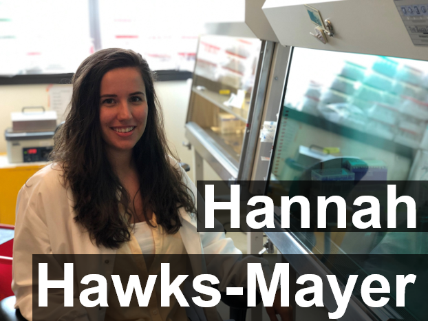 Research Assistant  hannah.hawks-mayer@childrens. harvard.edu  Hannah Hawks-Mayer is a Boston native. She received her B.S. from Virginia Tech in Biology in 2017.