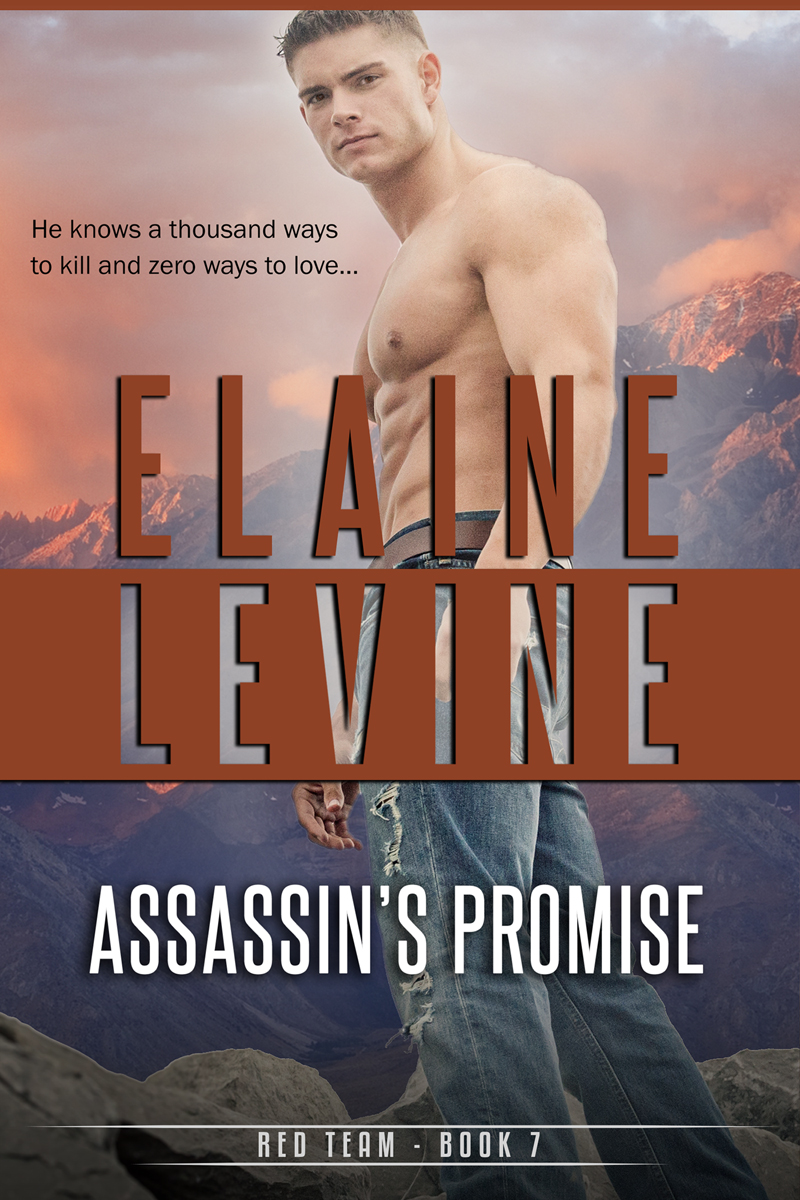 ElaineLevine_AssassinsPromise_800.jpg