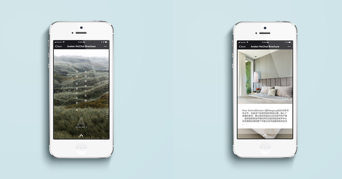 Beautiful lead in pages and mobile optimized, legible writing.