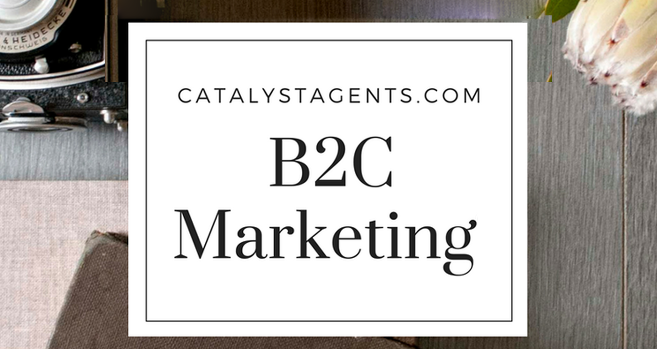 Catalyst+Agents+-+What+is+B2C.png