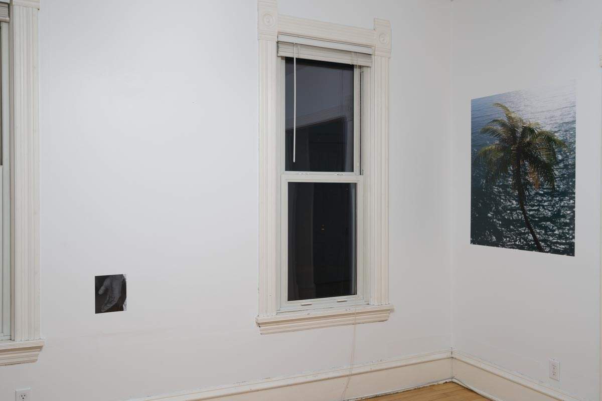 dylan nelson  / installation view