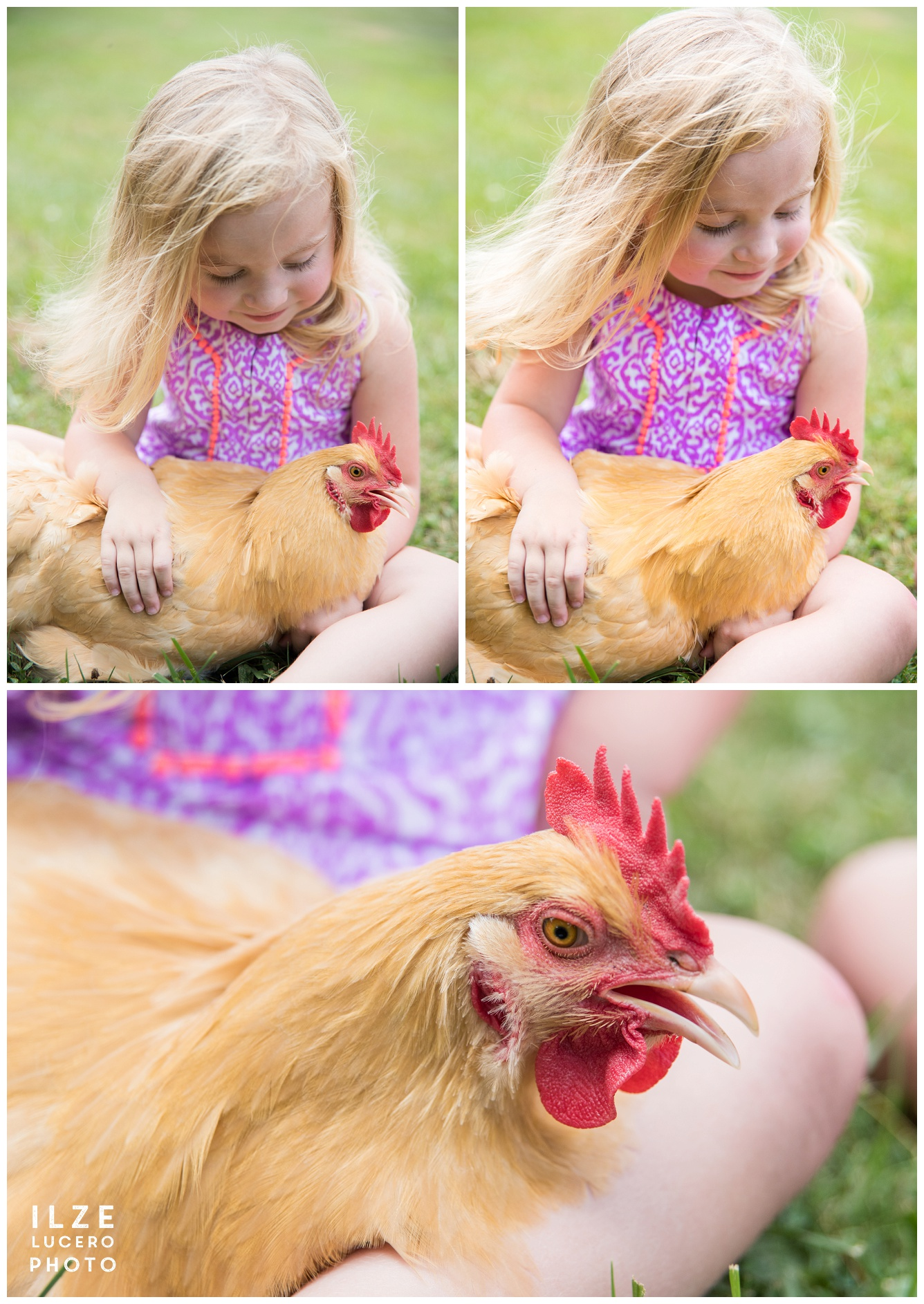 Girl and hen beautiful photo inspiration