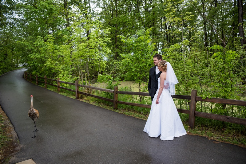Stony Creek Metro Park Wedding Photos