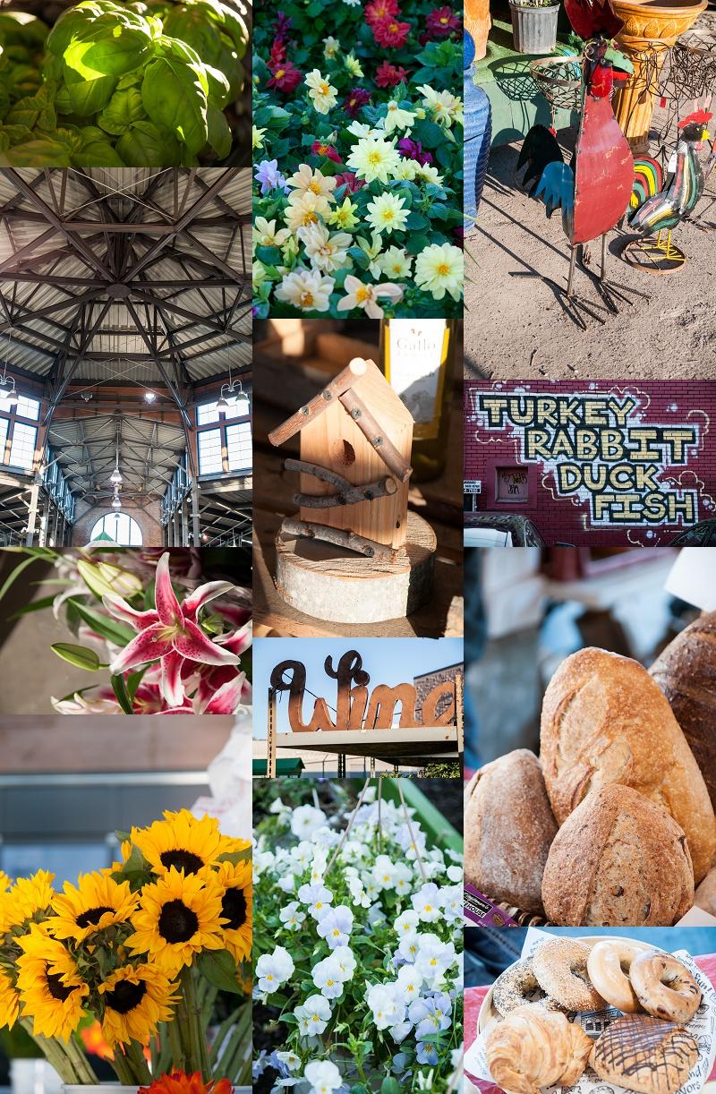 Ilze Lucero Eastern Market (6).jpg
