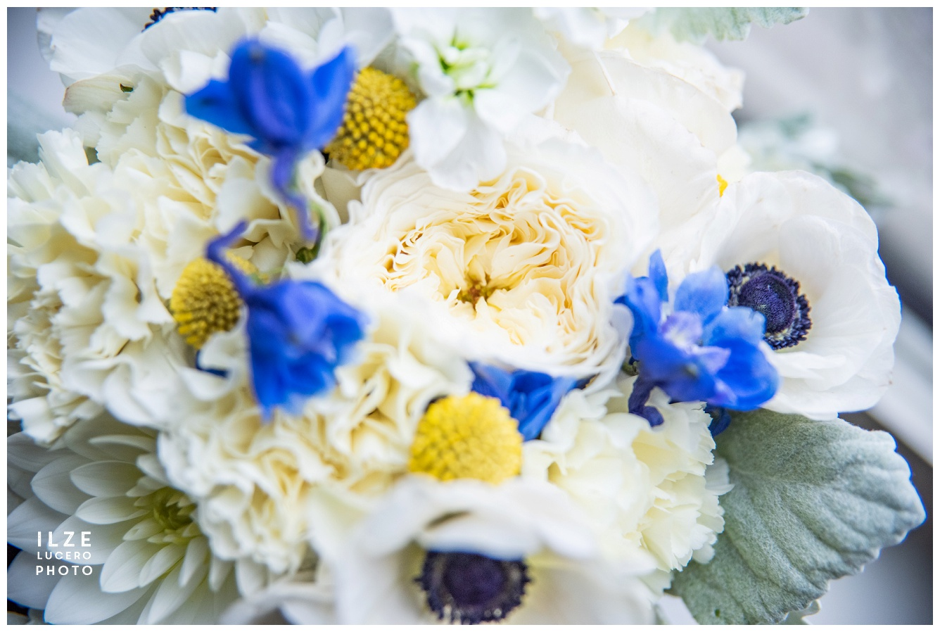 Wedding bouquet -  yellow and blue with garden roses, billy balls and anemones