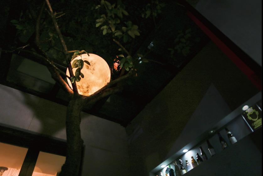 luna-lamp5