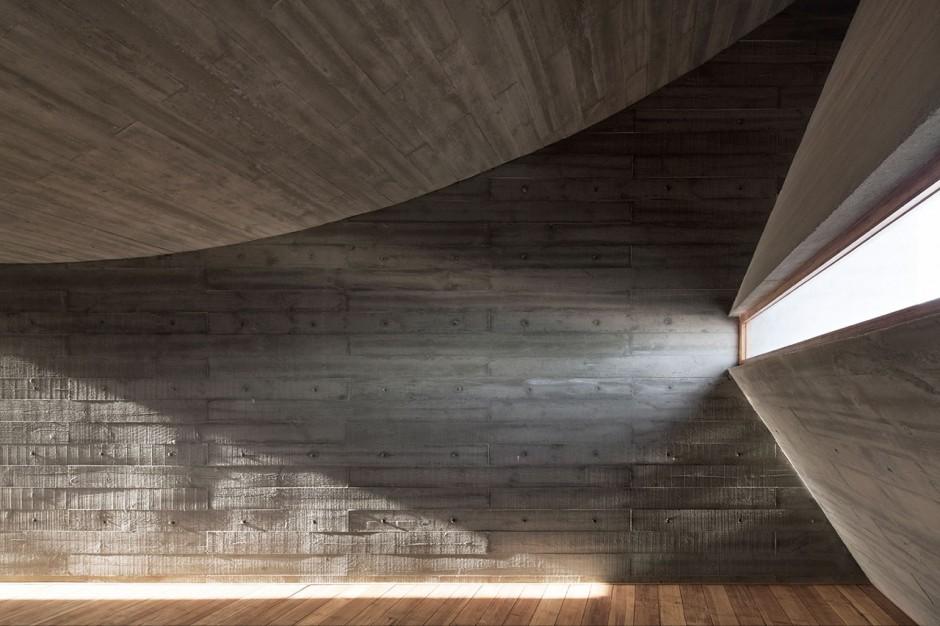 seashore-library-vector-architects8