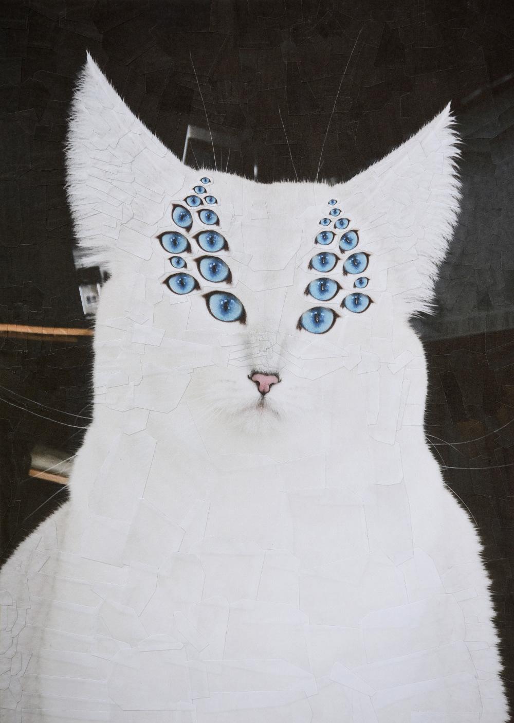 catsdogs4.jpg