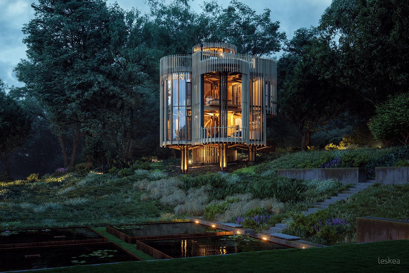 tree-house-constantia.jpg