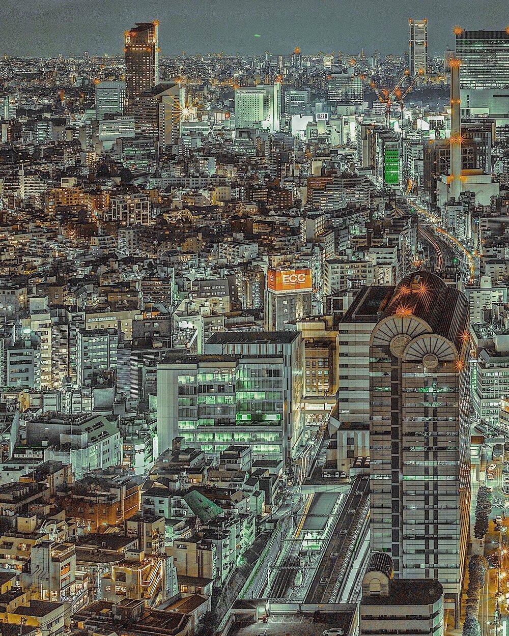 yoshito-hasaka-3.jpg
