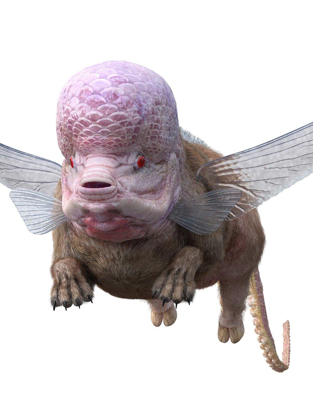 gentle-monster-aesplusf-chimera-1.jpeg