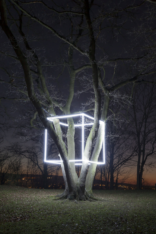 2020 EVI Lichtungen I Nathaniel Rackowe I Foto Sara Foerster_PS.jpg
