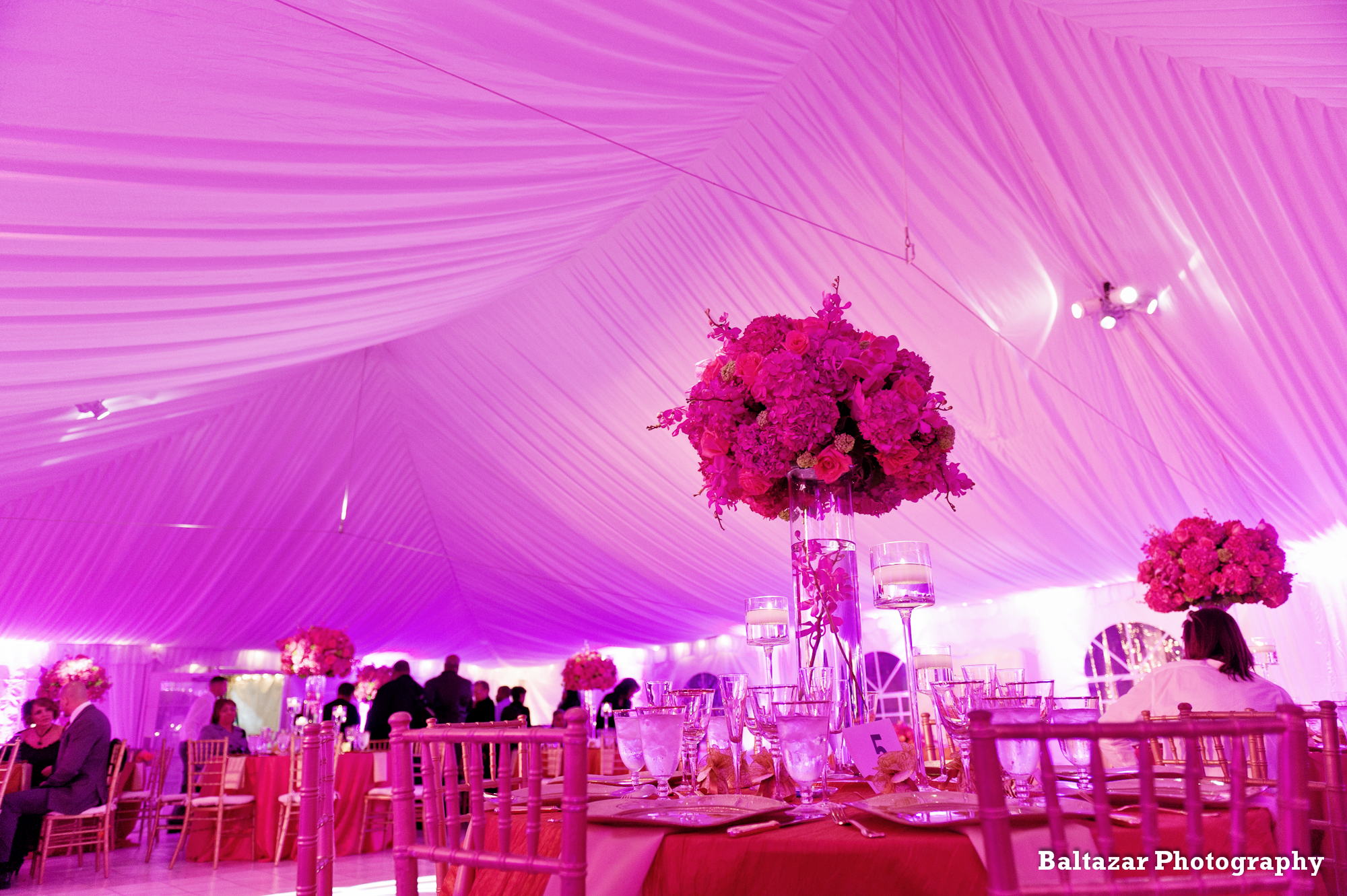 Pure Elegance Events Home Page Slideshow Image 8.jpg