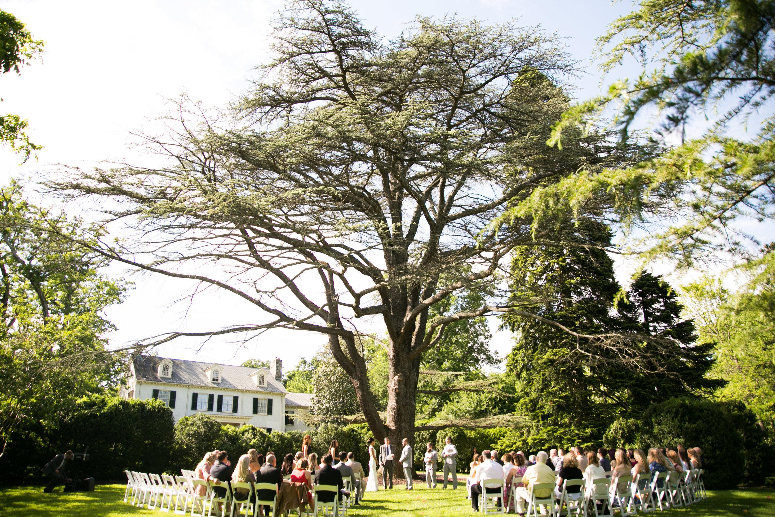 Pure elegance events Tynise Kee dc wedding planner va wedding planner rust manor house leesburg -0042.jpg