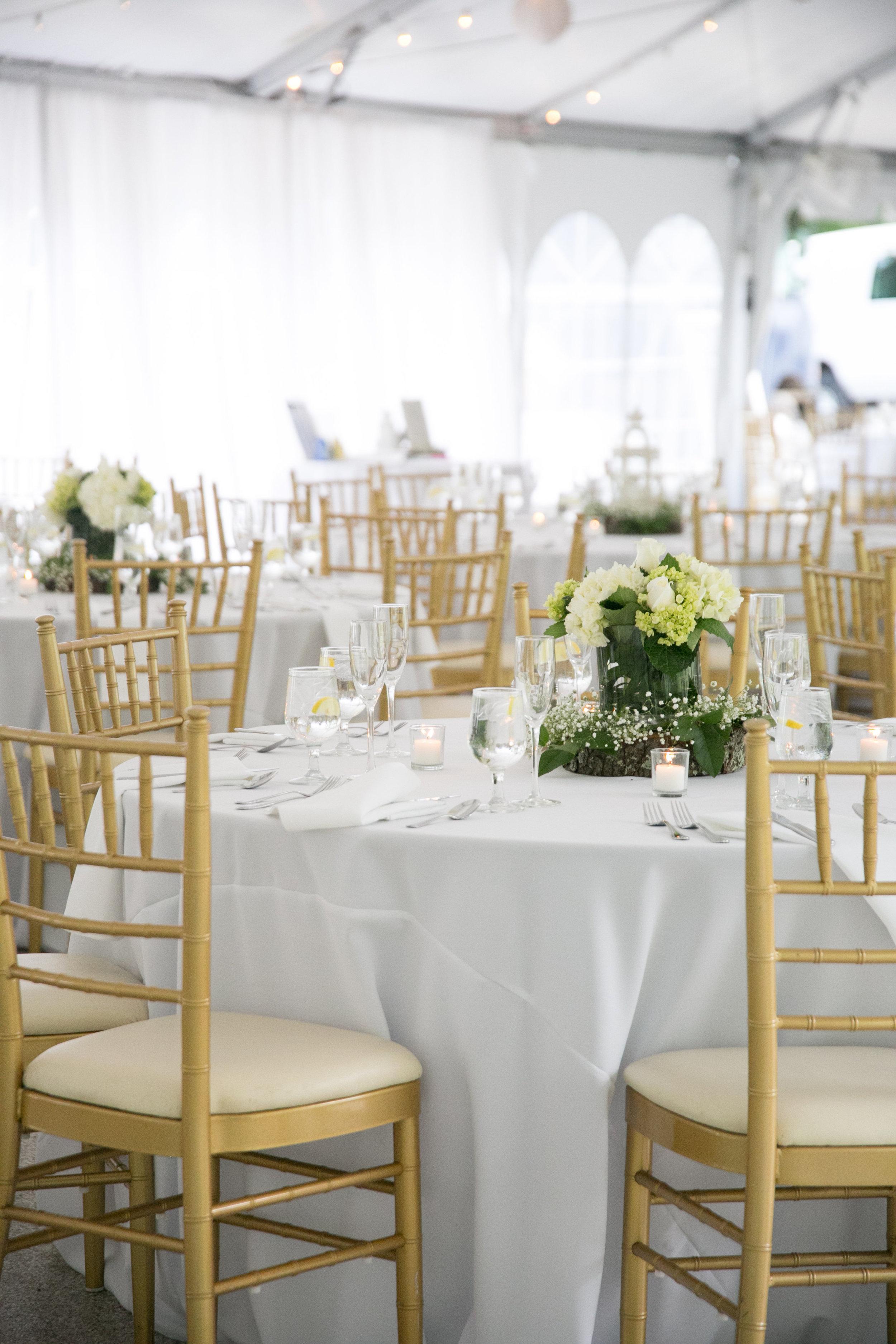 Pure elegance events Tynise Kee dc wedding planner va wedding planner rust manor house leesburg -0048.jpg