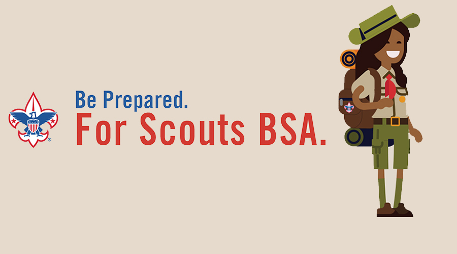 Scotus-BSA-infographic-header2.jpg