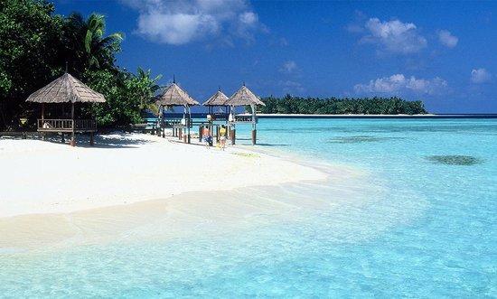 maldives (1).jpg