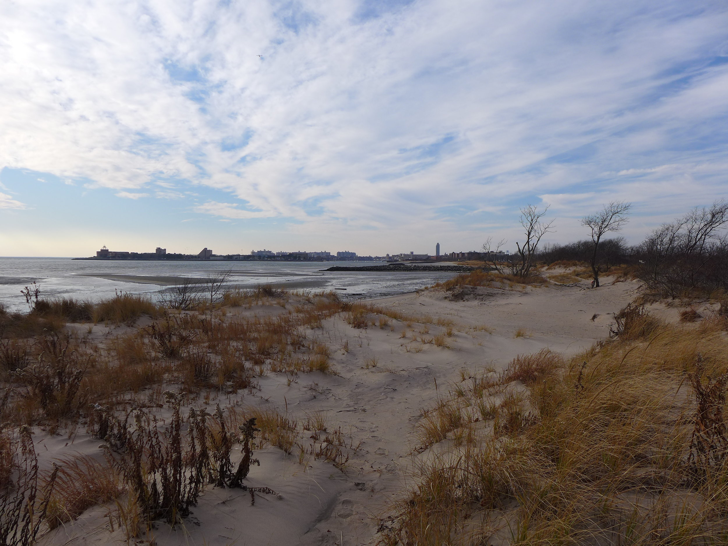 Point Breeze Dunes