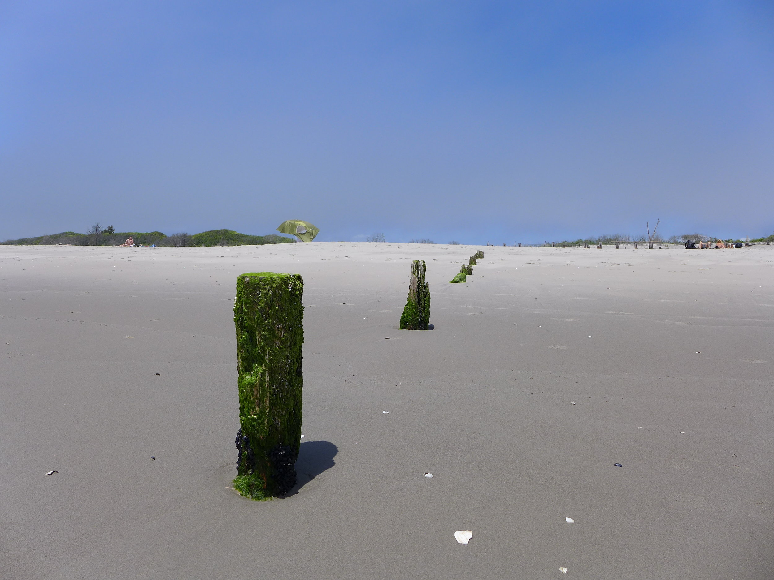 Pilings, Ft. Tilden Beach