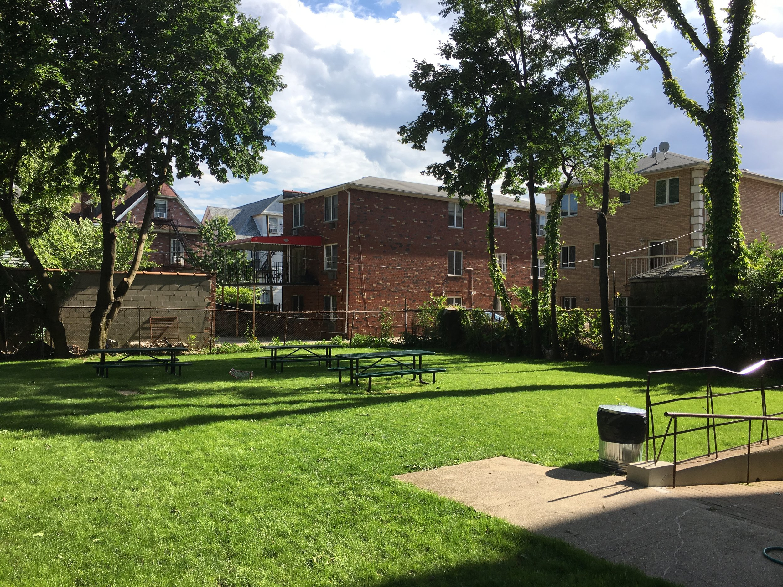 sunny yard.JPG