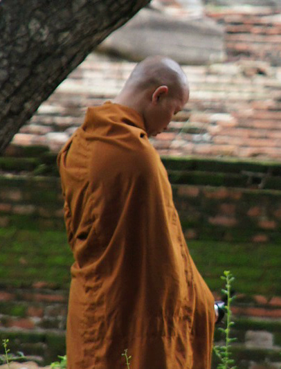Monk in Garden Pixabay Cropped.jpg