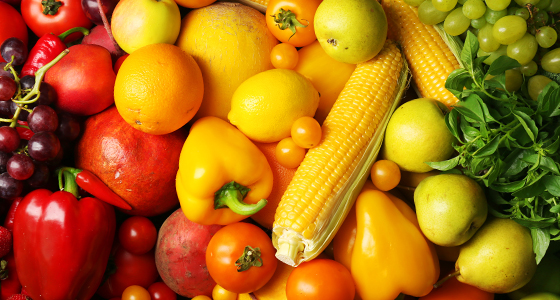 Nourishing Colors