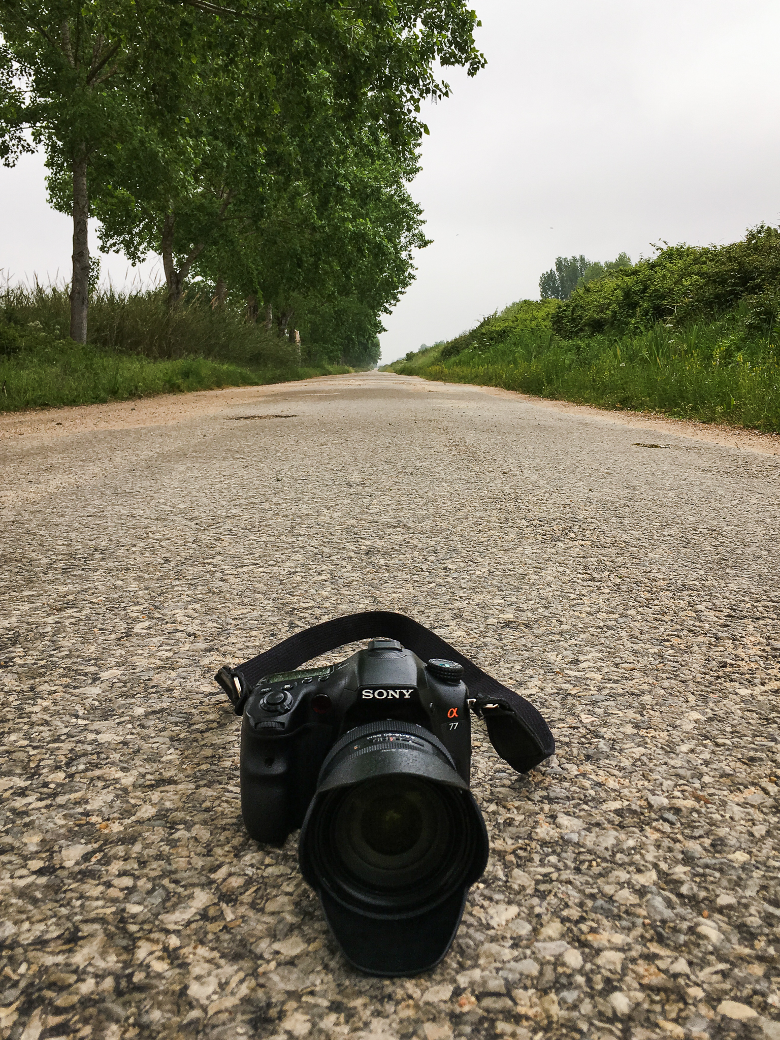 The Sony A77, still wet after a short period of rain in the first day of the pilgrimage.
