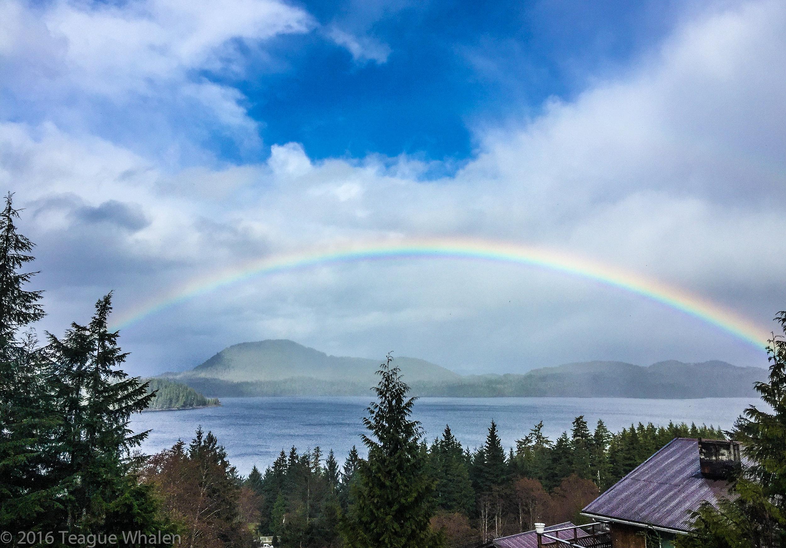 Suzanne's Rainbow.jpg