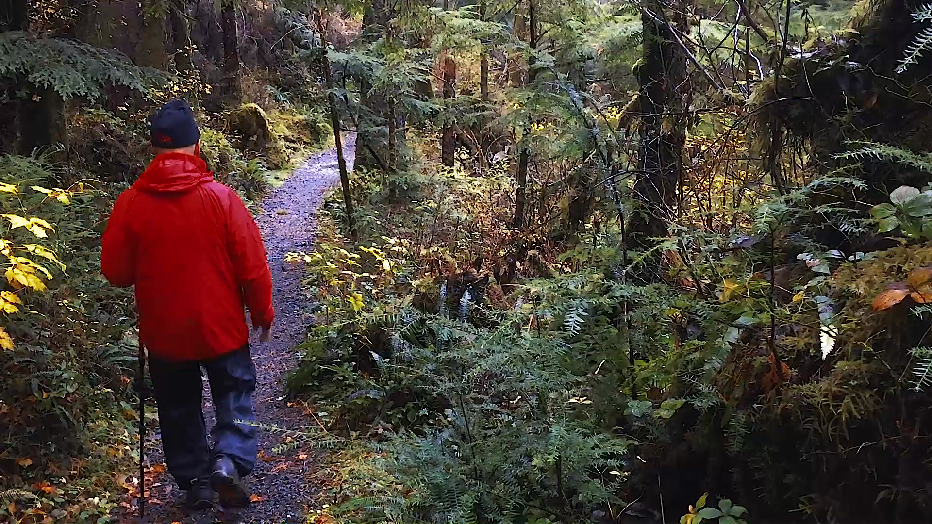 Jeff Hiking.jpg