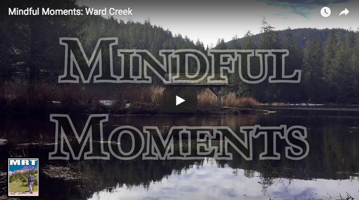 "CHECK OUT MRT's ""MINDFUL MOMENTS"" VIDEO EXPERIENCES HERE!"