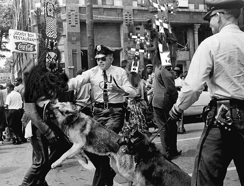 DogOn Protestor series Printscale.jpg