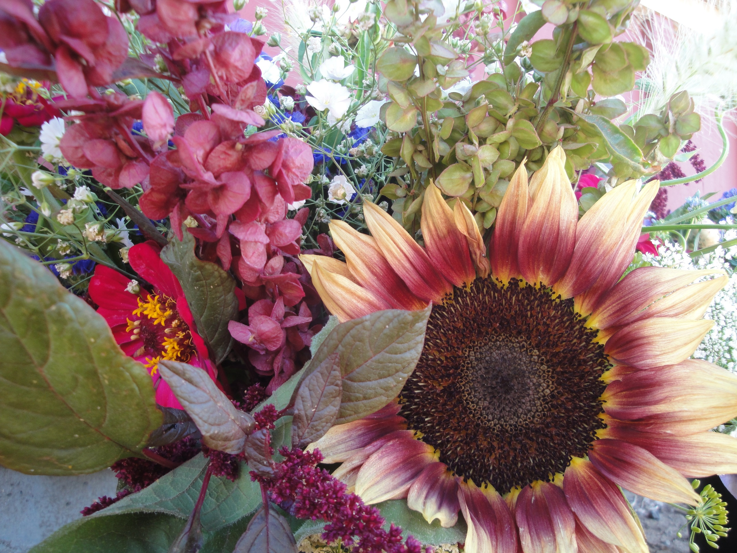 Gypsy Charmer Sunflower in a mixed bouquet