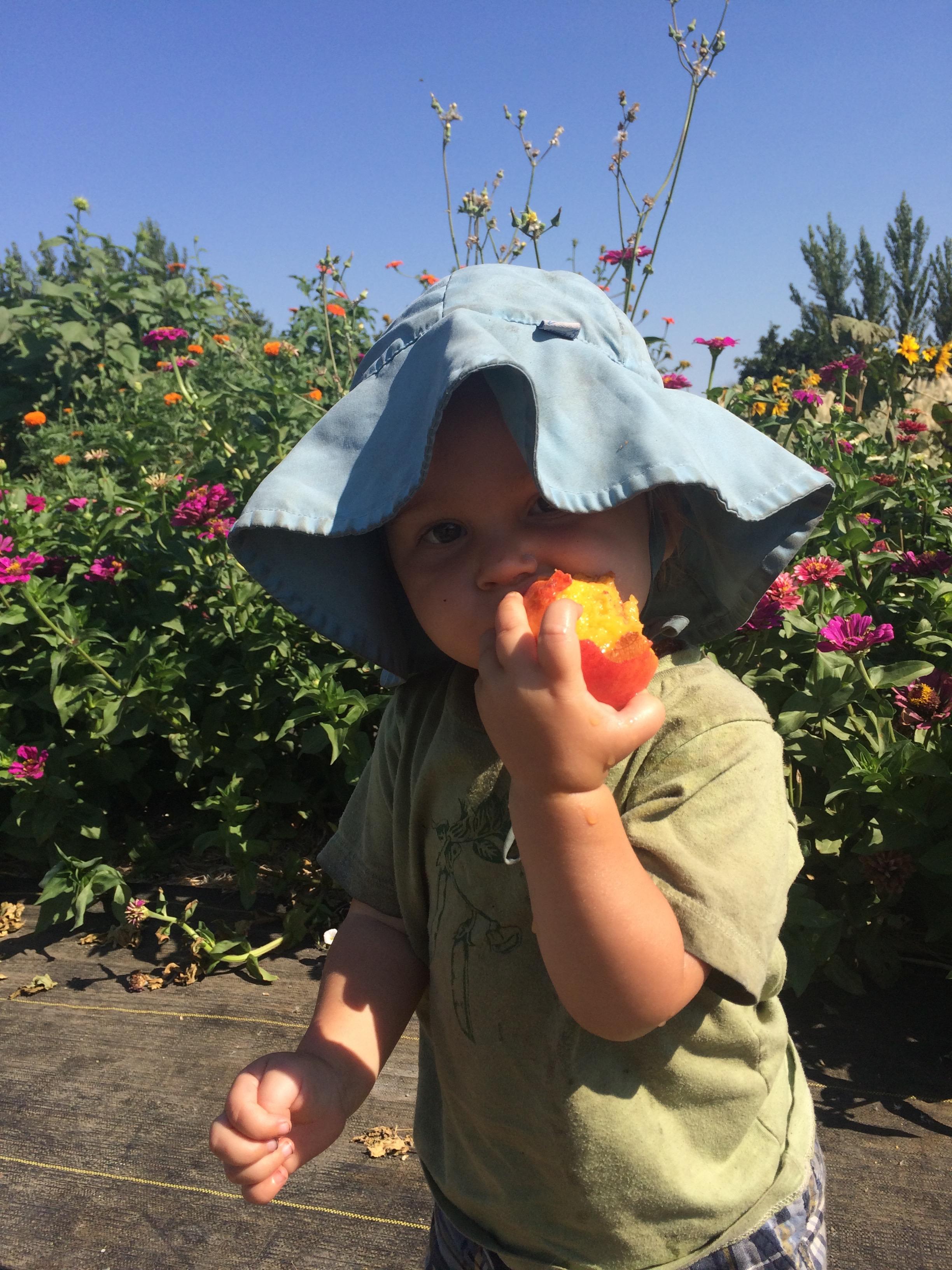 Nalin enjoying a summer peach snack on the farm