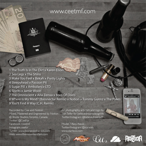 Cee - The Indie Experiment Volume 2