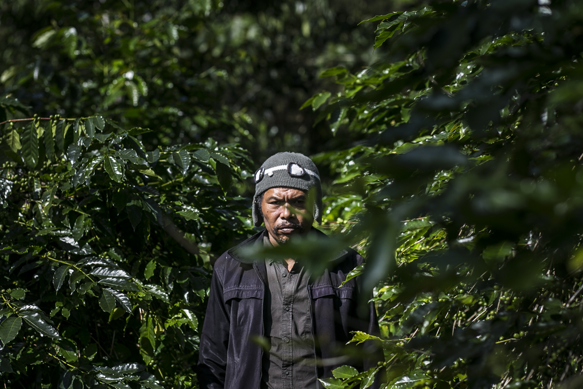 I Ketut Jati, Arabica Kintamani coffee farmer. Bali, Indonesia. 2019