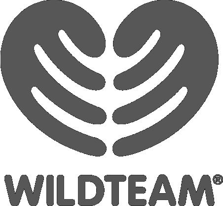 Logo WildTeam greyscaleAsset 1.png