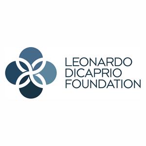 LDF-big-logo.png